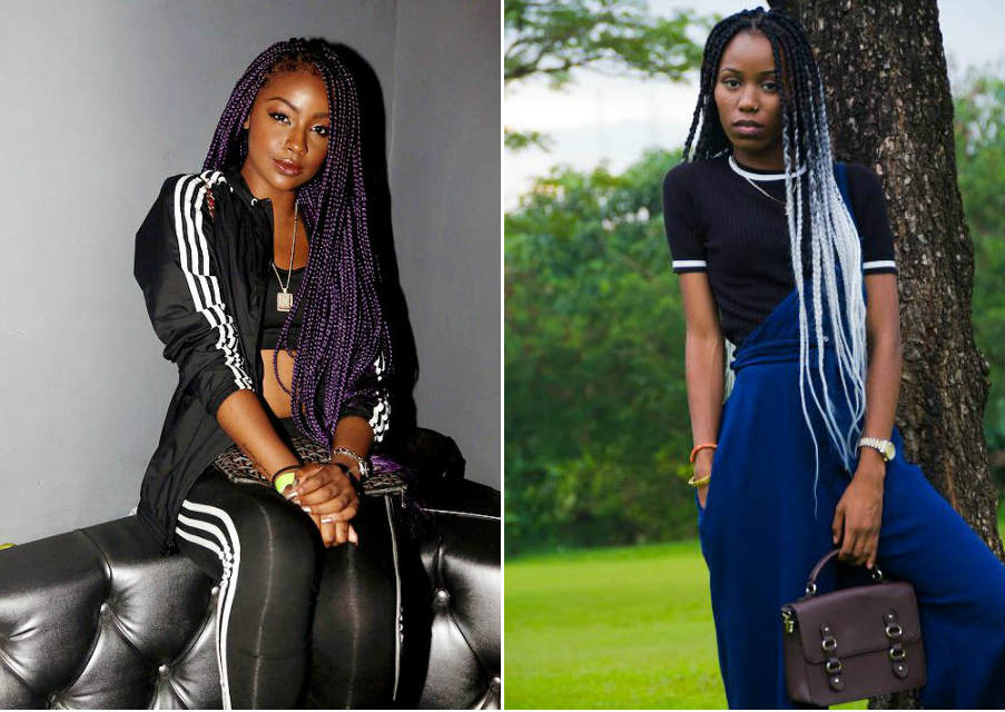 long_box_braids_colors_purple_white
