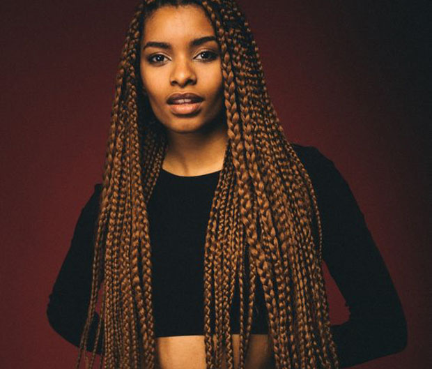 box braids with brown highlights hairstyle inspirations 2018